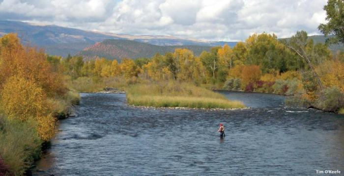 Fishing the Roaring Fork