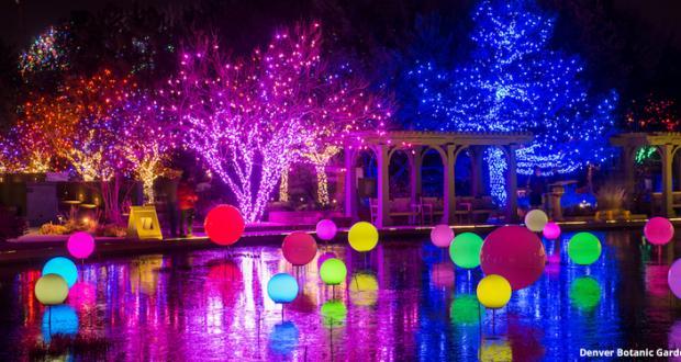 Blossoms of Light at the Botanic Gardens