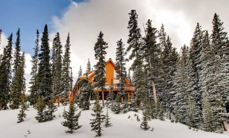 Sugar Pine Lodge - 3 Bedroom with Hot Tub Near Fairplay and Breckenridge