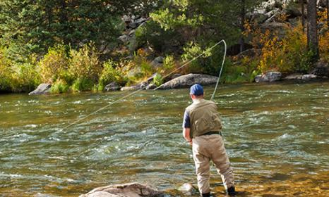 Colorado's Gold Medal Fishing Waters