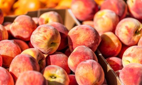 Palisade Peaches: A Delicious Piece of Colorado History
