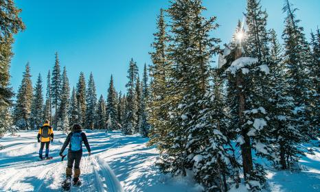 Guide to Snowshoeing in Colorado
