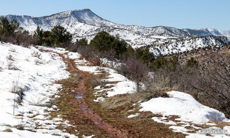 Mud Season in Colorado