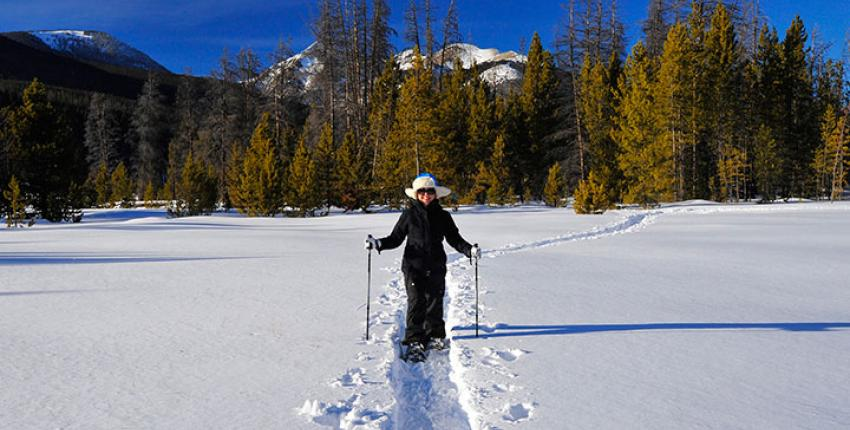 colorado-snowshoe
